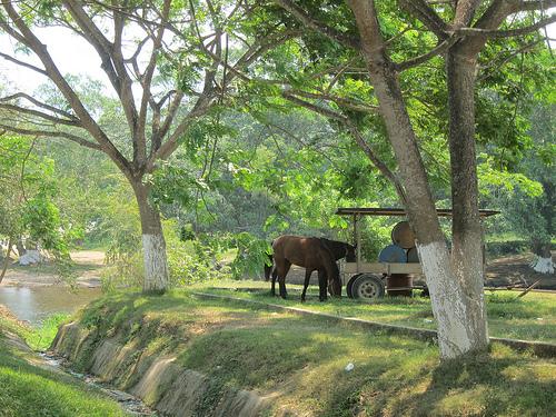 Foto di Belmopan
